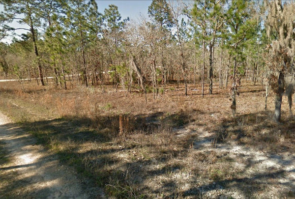 Rare .23 Acre Exclusive Vacant Lot Fit to Build Now- Owner Finance!