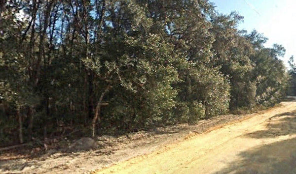 Residential .24 acres Minutes to Grooski Prairie Close To HWY 316 –Owner Finance