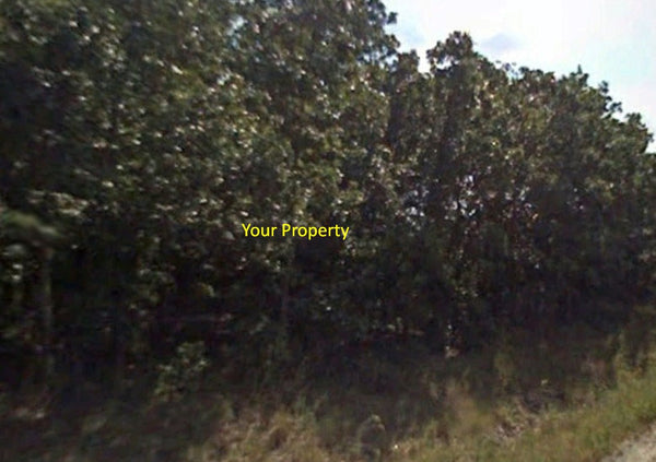 Oversized 1.59 Acre Agriculture Lot in Melrose Ready for Farm or Mobile