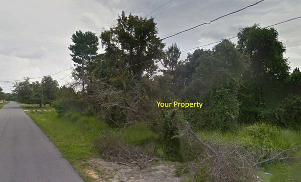 .23 Acre Lot on Paved Road Nearby Everything in Silver Spring Shore