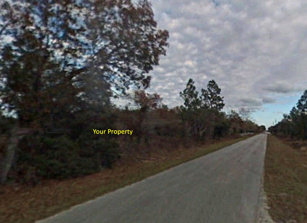 Oversized .99 Acre Lightly Wooded Lot on Paved Rd at Rainbow Lakes Estate