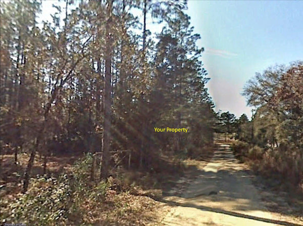 .92 acre lot Close To HWY40 and 41-Minutes to Rainbow Springs State Park