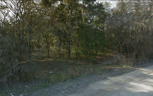 Oversized .33 lot-Close to Ocala Forest. Ready for your Mobile home!!
