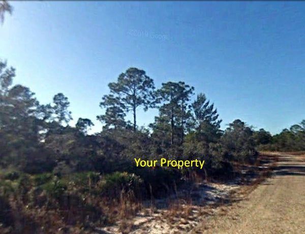 .23 Acre Amazing Buildable Lot near Many Different Amenities