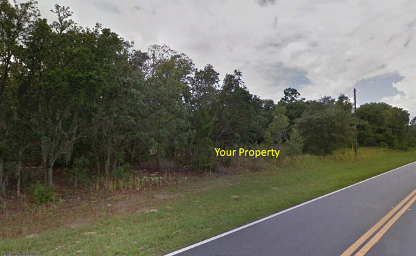 Investors Dream! .23 acre lot on Paved Road Minutes to Pine Ridge Golf Club