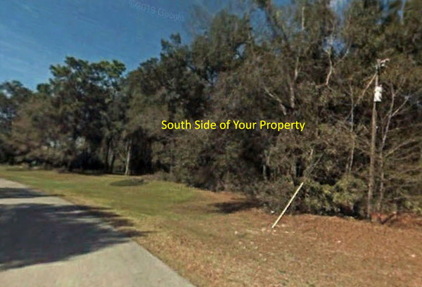 Great Investment! 111.13 Acre PUD zoned lot with direct access to State Road 200