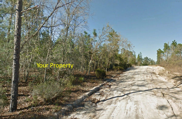 .23 Acre Mobile Friendly Lot -Close to Grassy Lake-Owner Finance