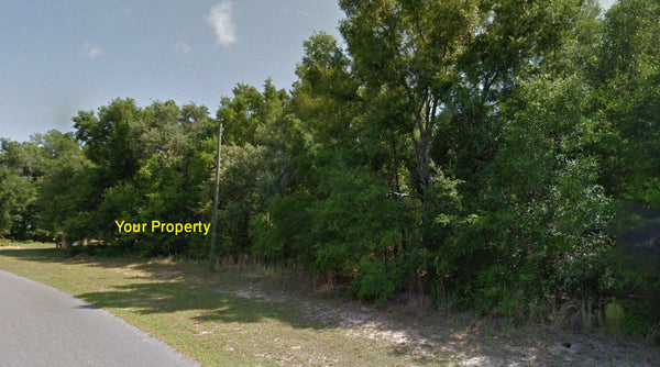 Majestic .40 acre lot By Citrus Springs Golf and Country Club-Owner Finance