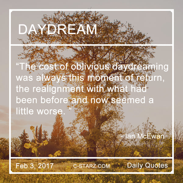 The cost of oblivious daydreaming was always this moment of return, the realignment with what had been before and now seemed a little worse.