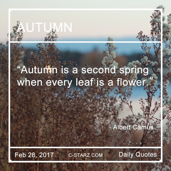 """Autumn is a second spring when every leaf is a flower."" - Albert Camus"