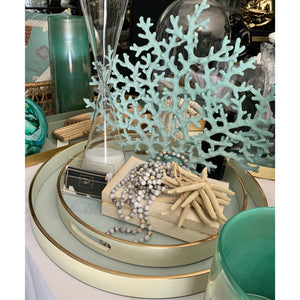 Soft Turquoise Coral Fan