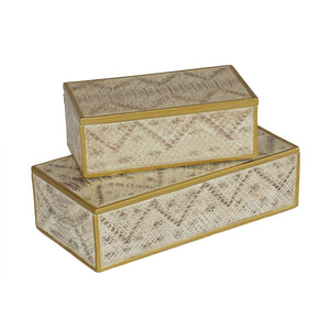Box Set Faux Snake Skin - Creams and Gold S/2