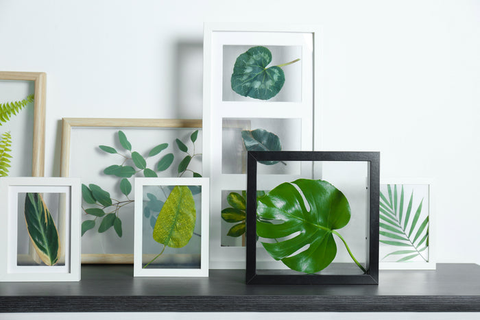 diy home decor framed leaves