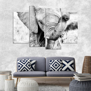 Kenyan Baby Elephant Multi Panel Canvas Wall Art - Elephant
