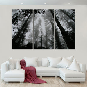 Fog Covering The Forest Multi Panel Canvas Wall Art - Gothic