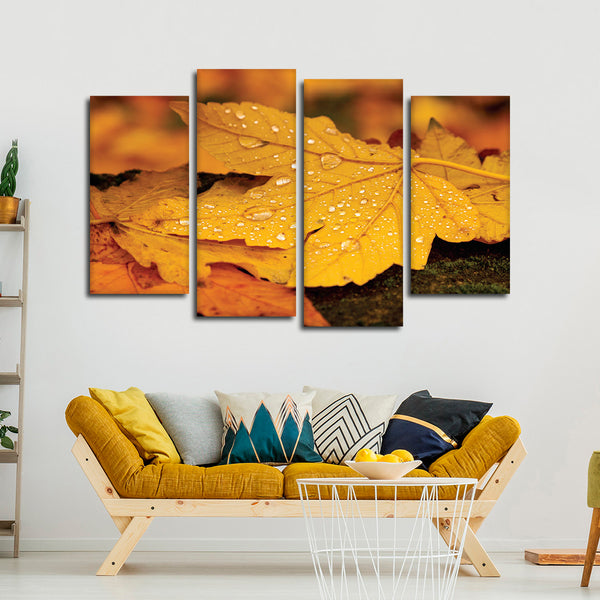 Autumn Water Droplets Multi Panel Canvas Wall Art