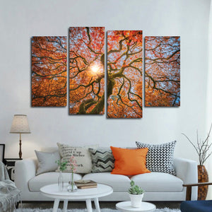 Japanese Maple Tree Multi Panel Canvas Wall Art - Botanical