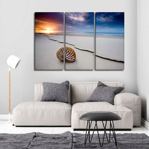 Shell Beach Multi Panel Canvas Wall Art - Beach