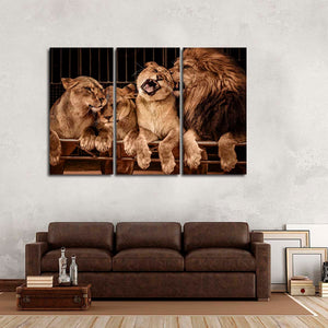 Lion Family Multi Panel Canvas Wall Art - Lion