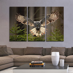 Owl Love Multi Panel Canvas Wall Art - Animals