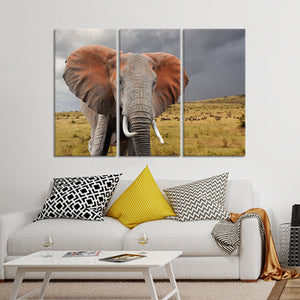 African Elephant Multi Panel Canvas Wall Art - Elephant