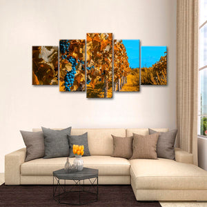 Argentina Vineyard Multi Panel Canvas Wall Art - Winery