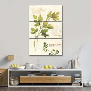 Aromantique I Multi Panel Canvas Wall Art - Botanical