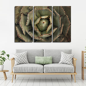 Dark Wooden Agave Bloom Multi Panel Canvas Wall Art - Botanical