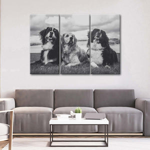 Bernese Mountain Dogs Multi Panel Canvas Wall Art - Dog