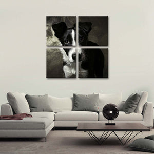 Border Collie Pup Multi Panel Canvas Wall Art - Dog