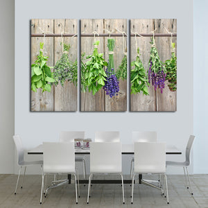 Culinary Herbs Multi Panel Canvas Wall Art - Kitchen