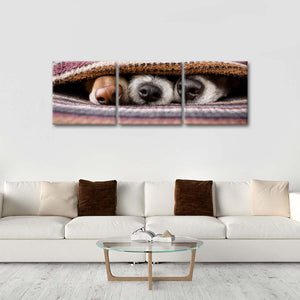 Dogs' Noses Multi Panel Canvas Wall Art - Dog