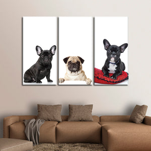 French Bulldogs And Pug Canvas Set Wall Art - Dog