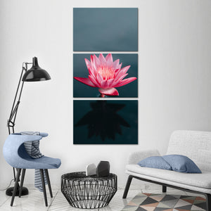 Lone Lotus Multi Panel Canvas Wall Art - Lotus