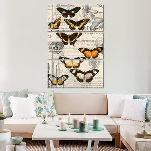 Butterfly Chic Multi Panel Canvas Wall Art - Shabby_chic