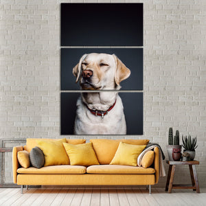 Labrador Multi Panel Canvas Wall Art - Dog