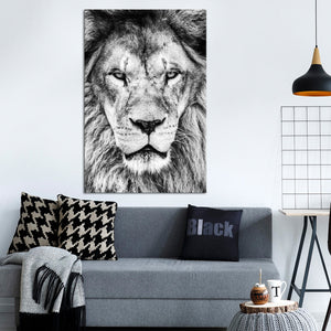 Lion Portrait Multi Panel Canvas Wall Art - Lion