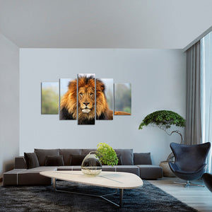 Lion's Fame Multi Panel Canvas Wall Art - Animals
