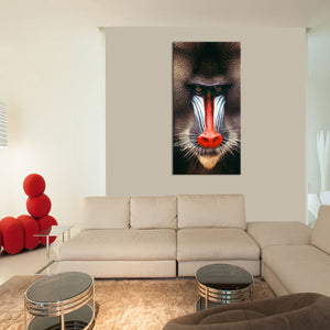 Mandrill Multi Panel Canvas Wall Art - Animals