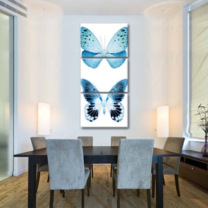 Miss Butterfly X-Ray White Multi Panel Canvas Wall Art - Animals