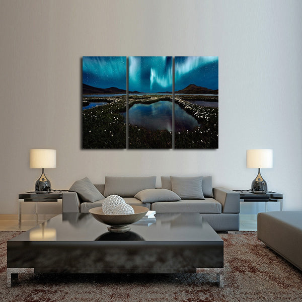 Northern Wonders Multi Panel Canvas Wall Art
