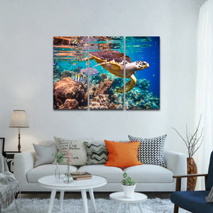 Ocean Turtle Multi Panel Canvas Wall Art - Turtle