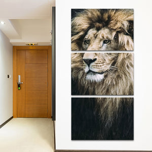 Old Lion Multi Panel Canvas Wall Art - Animals