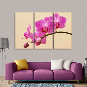 Pink Blooming Orchids Multi Panel Canvas Wall Art - Flower