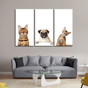 Pug And Kittens Multi Panel Canvas Wall Art - Cat