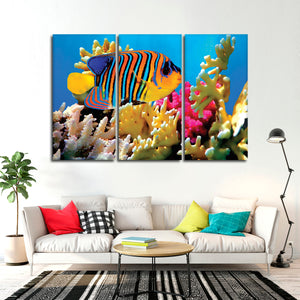 Queen Angelfish Multi Panel Canvas Wall Art - Fish