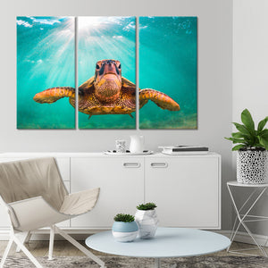 Sea Turtle Multi Panel Canvas Wall Art - Turtle
