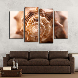 Spiral Shell Multi Panel Canvas Wall Art - Beach