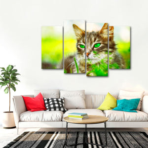 Green-Eyed Cat Multi Panel Canvas Wall Art - Cat