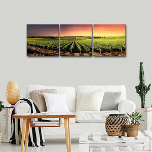 Sunset Over Vineyard Multi Panel Canvas Wall Art - Winery